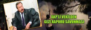 AKP'li vekilden  gezi raporu savunması
