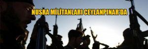 Nusra militanları Ceylanpınar'da