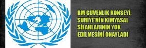 BM Güvenlik Konseyi, Suriye'nin kimyasal silahlarının yok edilmesini onayladı