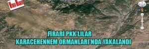 Firari PKK'lılar Karacehennem Ormanları'nda yakalandı