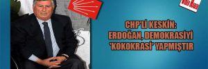 CHP'li Keskin: Erdoğan, Demokrasiyi 'Kokokrasi' yapmıştır