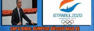 CHP'li Dibek: Olimpiyat bütçesi nasıl ve nerelere harcanmıştır?
