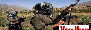 Firari PKK'lılar Ankara ve Van'a gönderildi