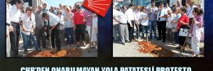 CHP'den onarılmayan yola patatesli protesto