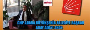 """CHP Adana Büyükşehir Belediye Başkan Aday Adayı Akay: """"CHP 2015'de iktidar olacak"""""""