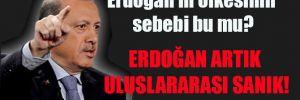Erdoğan'ın öfkesinin sebebi bu mu? Erdoğan artık uluslararası SANIK!
