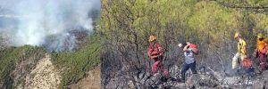 Milas'ta 3 hektarlık orman kül oldu