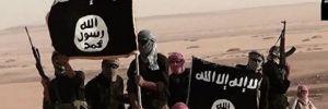 IŞİD'in para transfer hattına TEM darbesi!