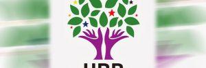 HDP'nin eş genel başkanları belli oldu