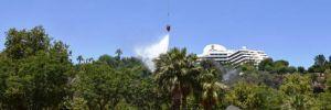 Antalya'da bir orman yangını daha