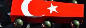Afrin'den acı haber! 1 şehit