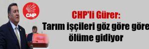 CHP'li Gürer: Tarım işçileri göz göre göre ölüme gidiyor
