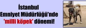 İstanbul Emniyet Müdürlüğü'nde 'milli köpek' dönemi!