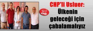 CHP'li Usluer: Ülkenin geleceği için çabalamalıyız