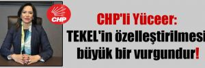 CHP'li Yüceer: TEKEL'in özelleştirilmesi büyük bir vurgundur!
