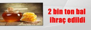 2 bin ton bal ihraç edildi