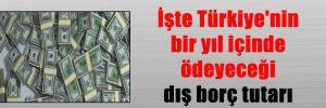 İşte Türkiye'nin bir yıl içinde ödeyeceği dış borç tutarı