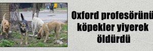 Oxford profesörünü köpekler yiyerek öldürdü