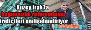 Kuzey Irak'ta bağımsızlık referandumu üreticileri endişelendiriyor