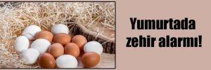 Yumurtada zehir alarmı!