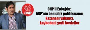 CHP'li Erdoğdu: AKP'nin besicilik politikasının kazananı yabancı, kaybedeni yerli besiciler
