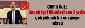 CHP'li Gök: Çocuk işçi ölümleri son 2 yılda çok yüksek bir seviyeye ulaştı