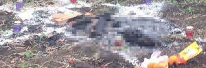 Korkunç olay: Satanist ayininde bir Türk'ü kurban ettiler!