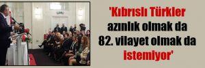 'Kıbrıslı Türkler azınlık olmak da 82. vilayet olmak da istemiyor'