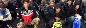 Sivas'ta bir otobüste 137 kaçak göçmen yakalandı