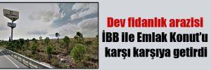 Dev fidanlık arazisi İBB ile Emlak Konut'u karşı karşıya getirdi