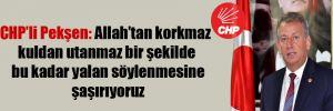 CHP'li Pekşen: Allah'tan korkmaz kuldan utanmaz bir şekilde bu kadar yalan söylenmesine şaşırıyoruz