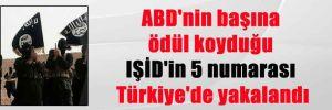 ABD'nin başına ödül koyduğu IŞİD'in 5 numarası Türkiye'de yakalandı