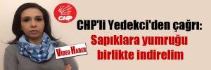 CHP'li Yedekci'den çağrı: Sapıklara yumruğu birlikte indirelim