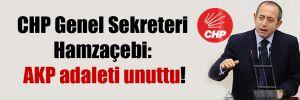 CHP Genel Sekreteri Hamzaçebi: AKP adaleti unuttu!
