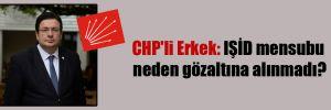 CHP'li Erkek: IŞİD mensubu neden gözaltına alınmadı?