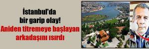 İstanbul'da bir garip olay! Aniden titremeye başlayan arkadaşını ısırdı