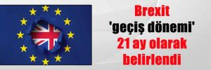 Brexit 'geçiş dönemi' 21 ay olarak belirlendi