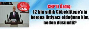 CHP'li Özdiş: 12 bin yıllık Göbeklitepe'nin betona ihtiyacı olduğunu kim, neden düşündü?
