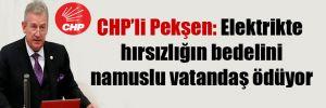 CHP'li Pekşen: Elektrikte hırsızlığın bedelini namuslu vatandaş ödüyor