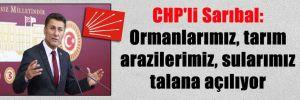 CHP'li Sarıbal: Ormanlarımız, tarım arazilerimiz, sularımız talana açılıyor