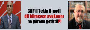 CHP'li Tekin Bingöl dil bilmeyen avukatını ne göreve getirdi?!