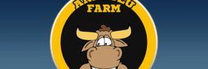 'Anadolu Farm'ın muhasebecisine gözaltı