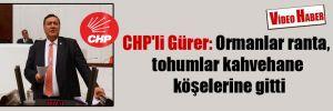 CHP'li Gürer: Ormanlar ranta, tohumlar kahvehane köşelerine gitti