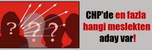 CHP'de en fazla hangi meslekten aday var!