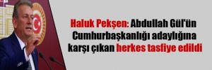 Haluk Pekşen: Abdullah Gül'ün Cumhurbaşkanlığı adaylığına karşı çıkan herkes tasfiye edildi