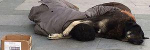 Taksim'de köpeğine sarılarak uyuyan çocuk yürek sızlattı