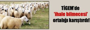TİGEM'de 'ihale bilmecesi' ortalığı karıştırdı!