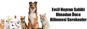 Evcil Hayvan Sahibi Olmadan Önce Bilinmesi Gerekenler