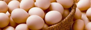 Yumurtada Irak krizi sürüyor!
