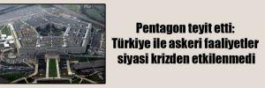 Pentagon teyit etti: Türkiye ile askeri faaliyetler siyasi krizden etkilenmedi